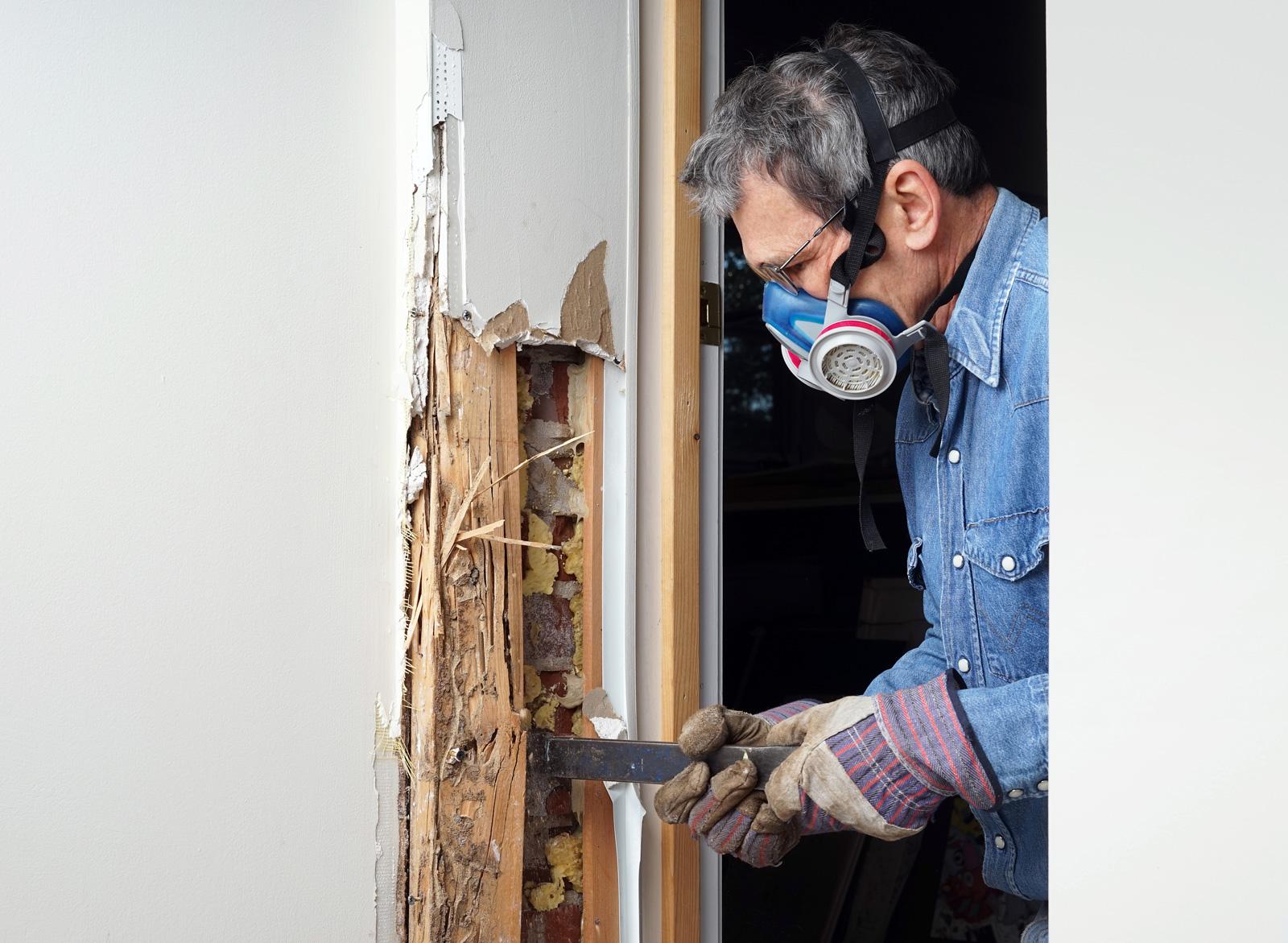 WDI/Termite Inspection